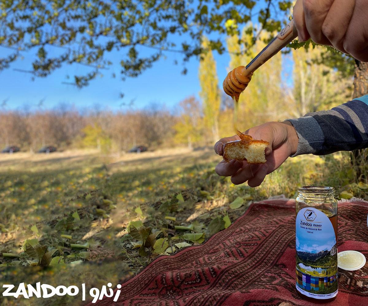 میل کردن عسل کوهی