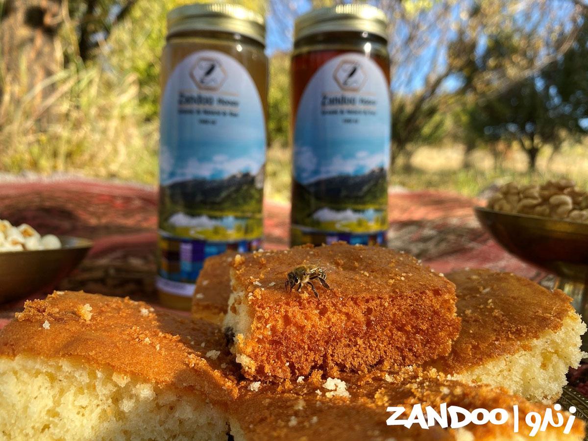 زنبورهای زنبورستان زندو در حال تغذیه از عسل کنار مجموعه