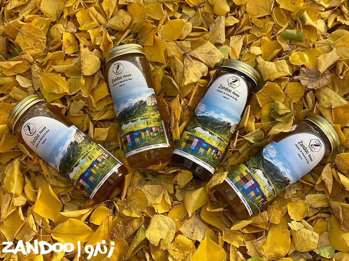 عسل های سماق زندو در میان برگ ها در طبیعت